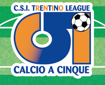calcio 5 cover